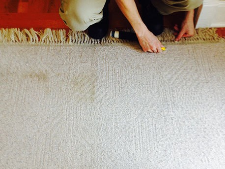area carpet cleaning